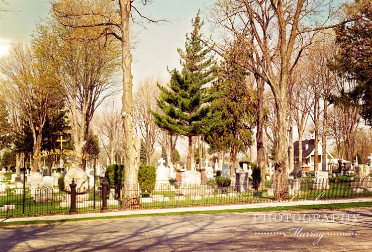 Cedar Grove Cemetery Notre Dame University watermarked