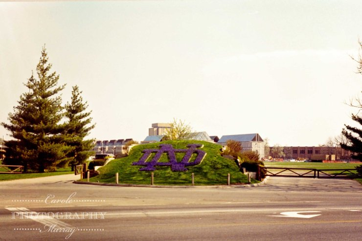 ND Flowers entrance 1994
