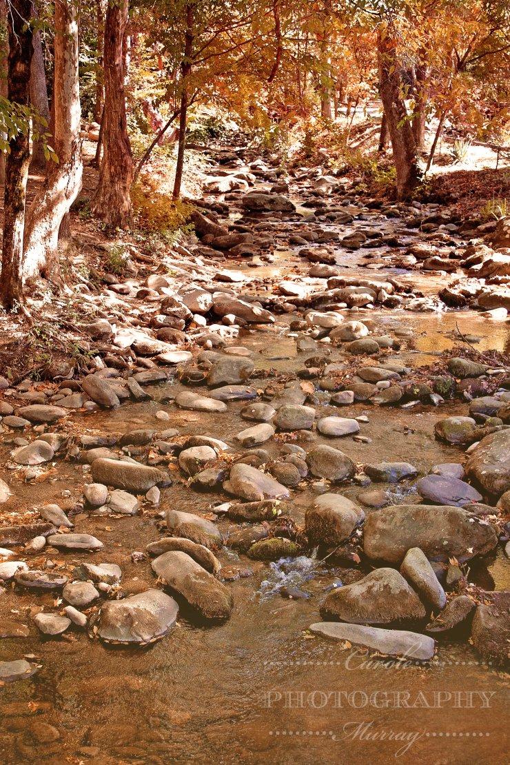 Mountain Stream Gatlinburg Tennessee